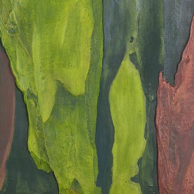 Wood Pallete v.03
